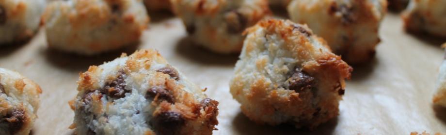 Chocolate Chip Polar BearTruffles